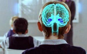 La Neuroeconomía creará nuevos empleos